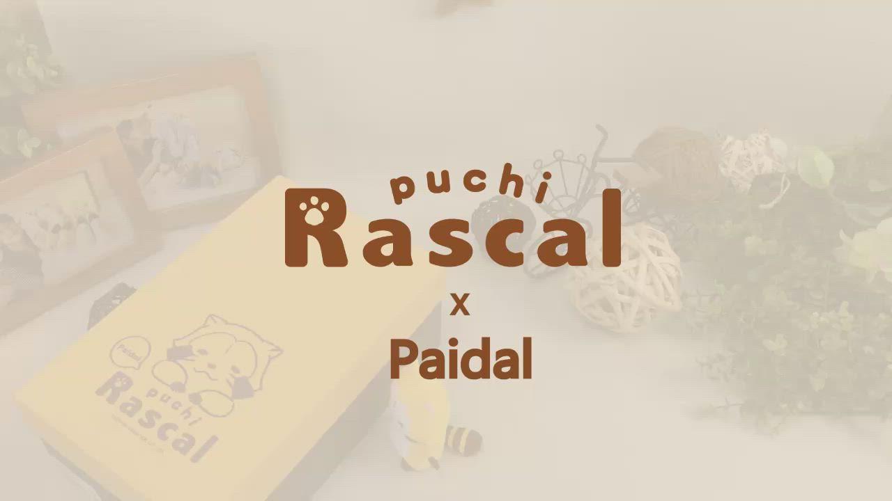 Paidal x Rascal小小浣熊側面小徽章厚底休閒鞋 product video thumbnail