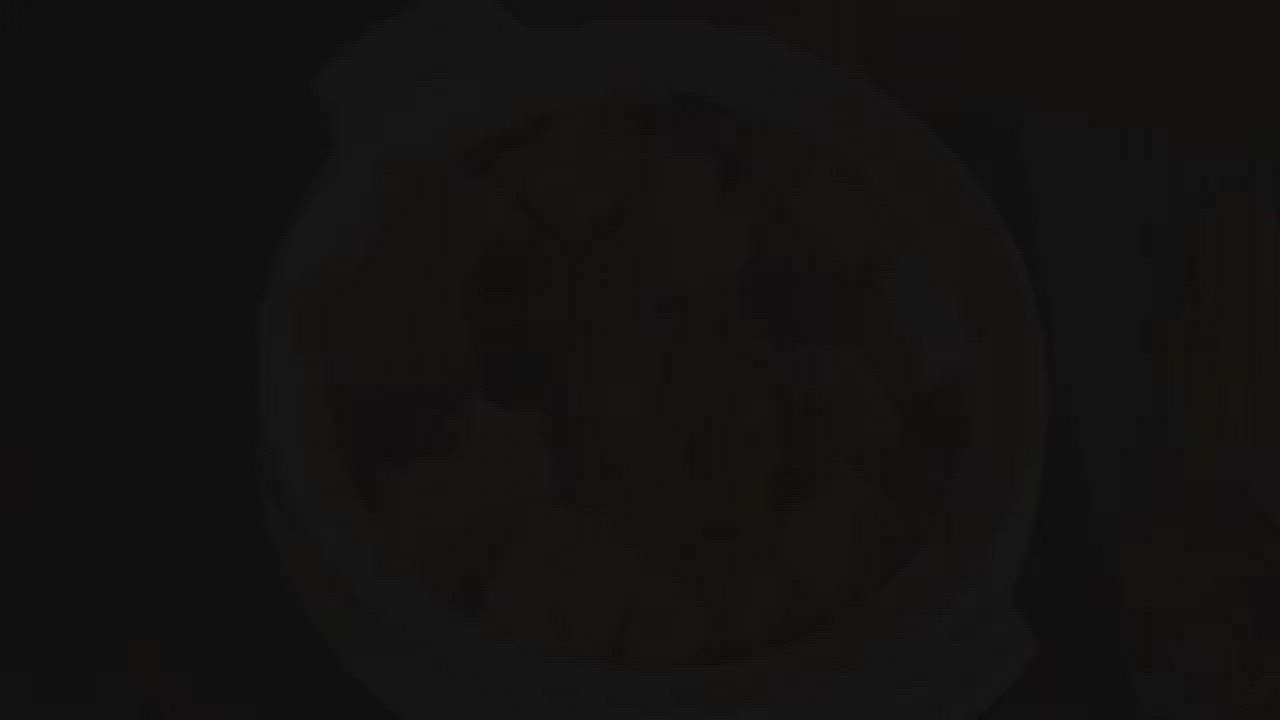 【青葉臺菜】總鋪ㄟ招牌1+1年菜組(花膠佛跳牆1+鰻魚櫻花蝦雙味米糕1)年菜預購 product video thumbnail
