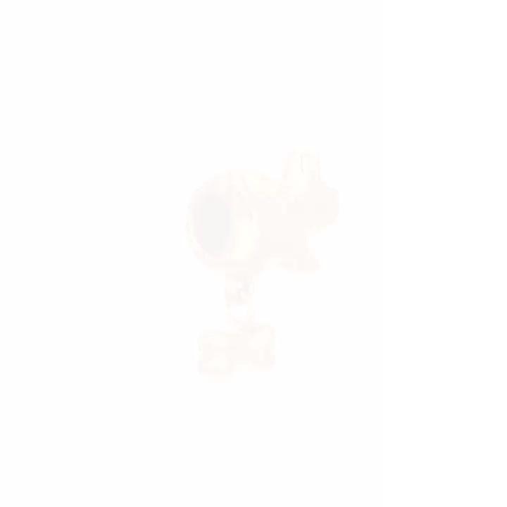 點睛品 Charme 狗狗與骨頭 黃金串珠 product video thumbnail